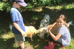 Farm Camp PA Day
