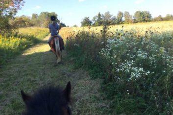 meadow-trail-ride